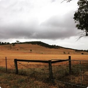stormhill